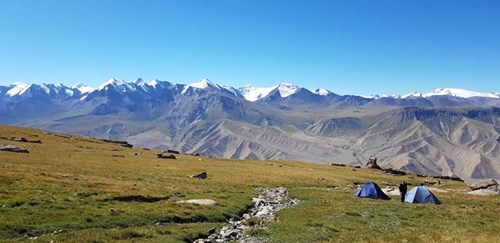 RZSS cat conservation blog - campsite at Kyrgyzstan at 3,700 feet