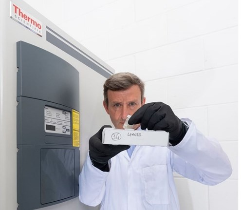 Biobank samples are curated and stored, usually at a chilly -80°C.
